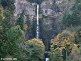 Image, 2005, Multnomah Falls, Oregon