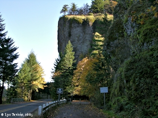 Image, 2005, Oneonta Gorge, Oregon, click to enlarge