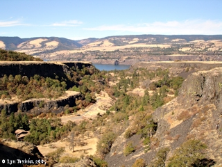 Image, 2005, Rowena Dell, Oregon, click to enlarge