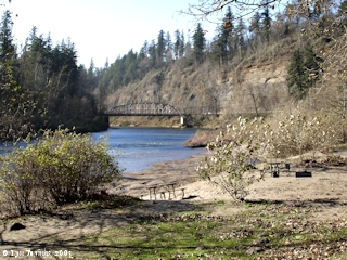 Image, 2005, Sandy River at Dabney State Recreation Area, Oregon, click to enlarge