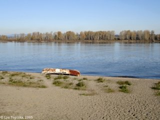 Image, 2005, Beach, Sauvie Island, click to enlarge