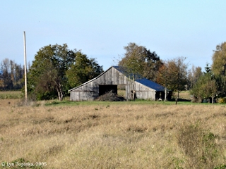 Image, 2005, Old Barn, Sauvie Island, click to enlarge