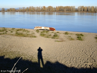 Image, 2005, Sauvie Island beach, click to enlarge