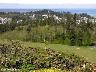 Image, 2005, Astoria, Oregon, from Coxcomb Hill, click to enlarge