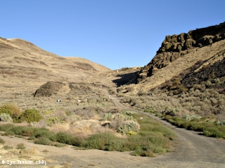 Image, 2005, Spring Gulch, click to enlarge