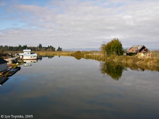 Image, 2005, Svensen Island, Oregon, click to enlarge