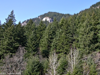Image, 2005, Outcrop, Wind Mountain, click to enlarge