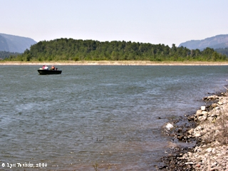Image, 2006, Ives Island and Beacon Rock, Washington, click to enlarge