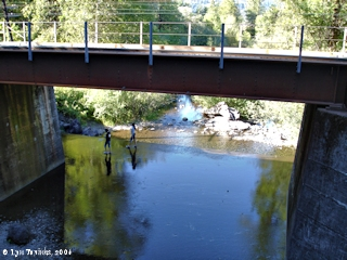 Image, 2006, Oneonta Creek and Railroad Bridge, click to enlarge