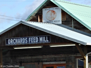 Image, 2006, Orchards Feed Mill, Orchards, click to enlarge