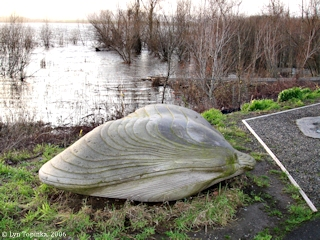 Image, 2006, Mussel, Smith Lake, Oregon, click to enlarge