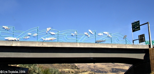 Image, 2006, The Dalles Fish Bridge, click to enlarge