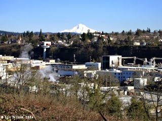 Image, 2006, West Linn, Oregon City, and Mount Hood, click to enlarge