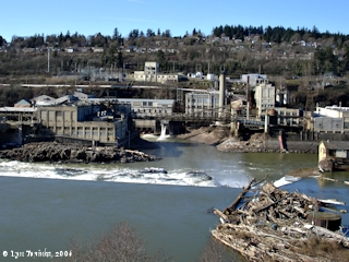 Image, 2006, Willamette Falls, click to enlarge