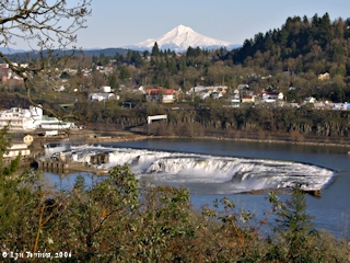 Image, 2006, Willamette Falls and Mount Hood, click to enlarge