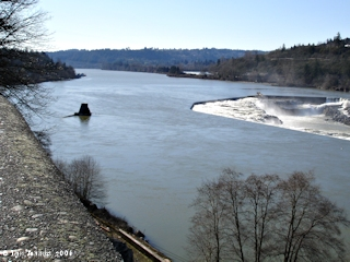 Image, 2006, Willamette River upstream from Willamette Falls, click to enlarge