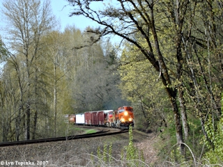 Image, 2007, Burlington Northern Santa Fe at Ridgefield NWR, click to enlarge