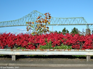 Image, 2007, Driving under the Astoria-Megler Bridge, from Astoria, Oregon, click to enlarge