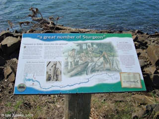 Image, 2000, Information Sign, click to enlarge
