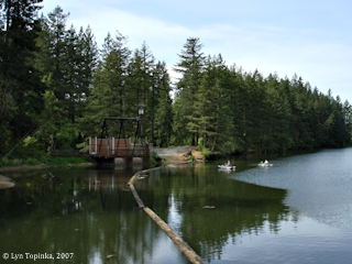 Image, 2007, Round Lake, Washington, click to enlarge