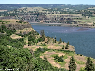 Image, 2007, View upstream from Rowena Crest, Oregon, click to enlarge