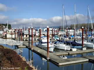 Image, 2007, Marina, St. Helens, Oregon, click to enlarge