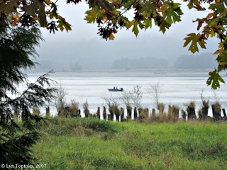 Image, 2007, Columbia River at Stella, Washington, click to enlarge