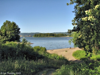 Image, Belle Vue Point, Sauvie Island, Oregon