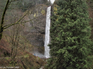 Image, 2009, Latourell Falls, Oregon, click to enlarge