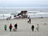 Image, 2009, Peter Iredale shipwreck, Pacific Ocean, Oregon