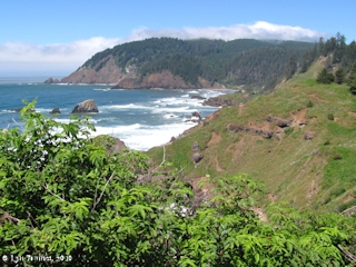 Image, 2010, Ecola Point looking north, Oregon, click to enlarge