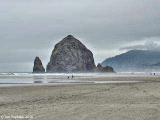 Image, 2010, Haystack Rock, Oregon, click to enlarge