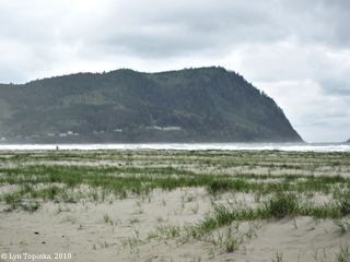 Image, 2010, Tillamook Head from Seaside, Oregon, click to enlarge
