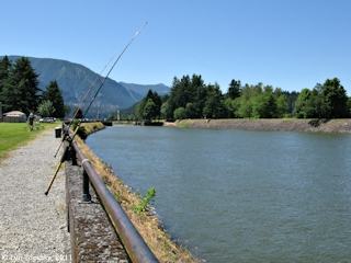 Image, 2011, Cascade Locks, Oregon, click to enlarge
