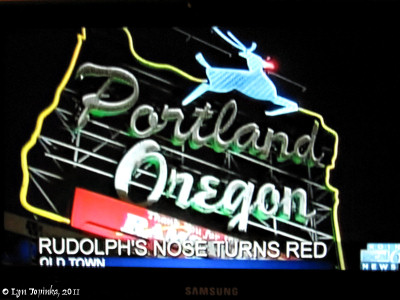 Image, 2011, White Stag Sign, Rudolph nose lit, click to enlarge