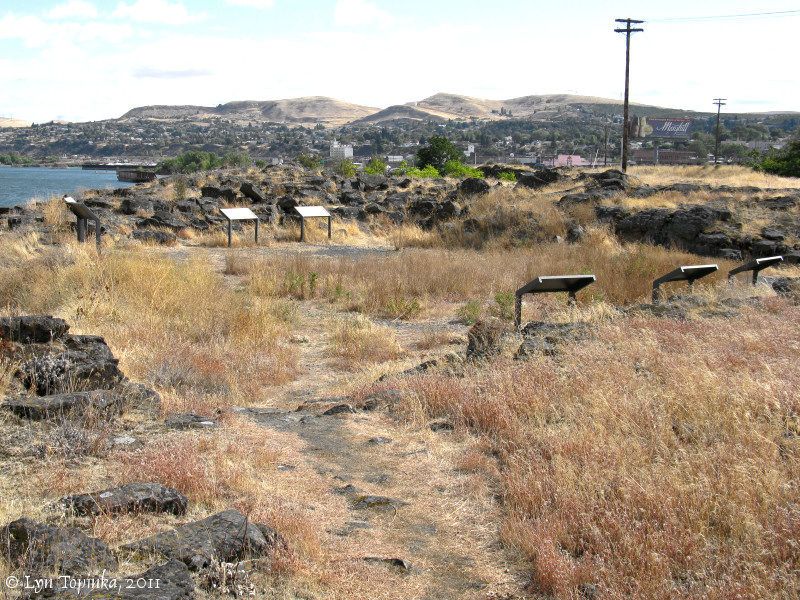 Image, 2011, Rock Fort area, The Dalles, Oregon, click to enlarge