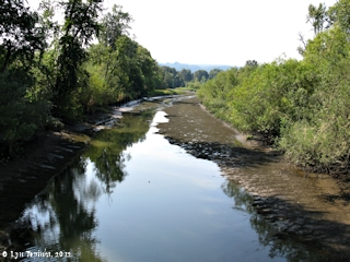 Image, 2012, Point Adams Fish Station, Clatskanie River/Beaver Slough, click to enlarge