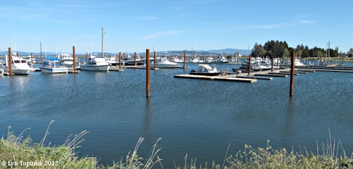 Image, 2012, Hammond Boat Basin, Hammond, Oregon, click to enlarge