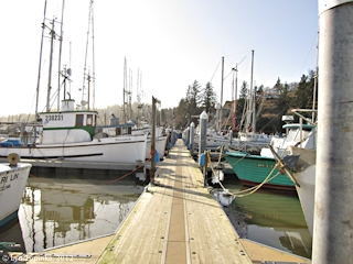Image, 2012, Ilwaco, Washington, click to enlarge