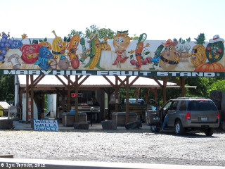Image, 2012, Maryhill Fruit Stand, Washington, click to enlarge