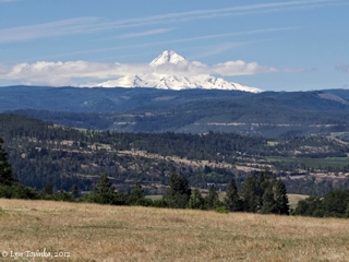 Image, 2012, Mount Hood from Lyle, Washington, click to enlarge