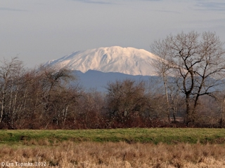 Image, 2012, Mount St. Helens from Scappoose Bottoms, Oregon, click to enlarge