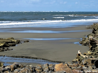 Image, 2012, Pacific Ocean from North Cove, Willapa Bay, click to enlarge