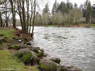 Image, 2012, Washougal River, Washougal, Washington, click to enlarge