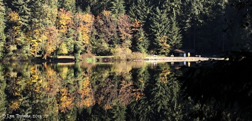 Image, 2013, Battle Ground Lake, Washington, click to enlarge