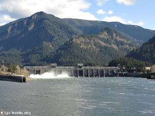 Image, 2013, Bonneville Dam, on the Columbia River, click to enlarge