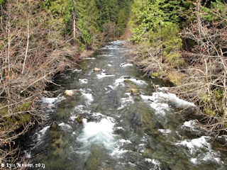 Image, 2013, Little White Salmon River, Washington, click to enlarge