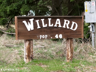 Image, 2013, Willard, Washington, click to enlarge
