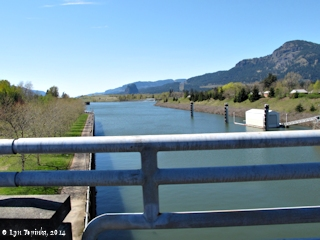 Image, 2014, Bonneville Locks, Bonneville Dam, click to enlarge