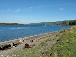 Image, 2014, Columbia River from Martin's Bar, Woodland, Washington, click to enlarge